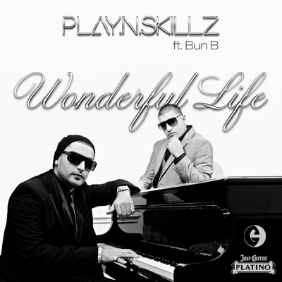 Wonderful Life Cover