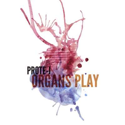 Organs Play Promo Photo