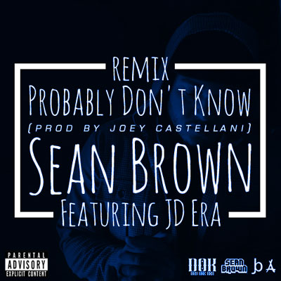 sean-brown-probably-dont-know-remix