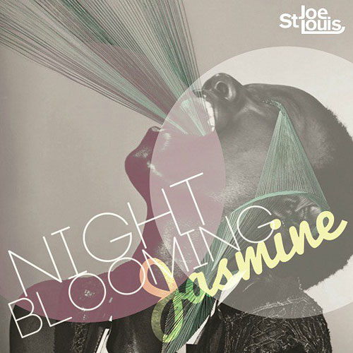 Night Blooming Jasmine Cover