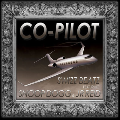 Co-Pilot Cover