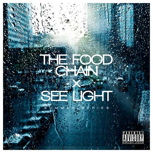 See Light Cover