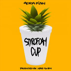 Adria Kain - Styrofoam Cup Artwork