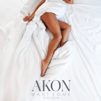 Akon - Want Some ft. DJ Chose Artwork