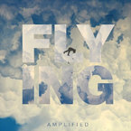 Amplified - Flying Artwork