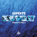 Aspektz - Snowday Artwork