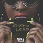 Audra the Rapper - Fronto Leaf Artwork