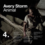 Avery Storm - Animal Artwork