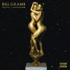Big Grams (Big Boi and Phantogram) - Fell In the Sun Artwork