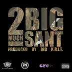 Big SANT - 2 Much Artwork