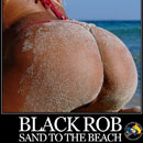 Black Rob - Sand to the Beach Artwork