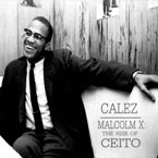 Calez - Malcolm X Artwork