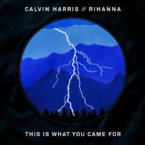 Calvin Harris - This Is What You Came For ft. Rihanna Artwork