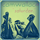 Cameron Wallace - Saturday Artwork