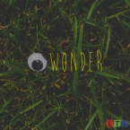 Case Arnold - I Wonder Artwork