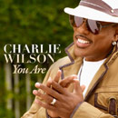 Charlie Wilson - You Are Artwork