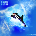 Collie Buddz - Like Yuh Miss Me Artwork