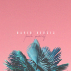06227-david-versis-touch-yourself
