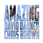 David Banner ft. Chris Brown - Amazing Artwork