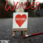 David Correy - Wonder Artwork