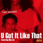 Dom Kennedy - U Got It Like That ft. Niko G4 Artwork