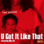 08196-dom-kennedy-u-got-it-like-that