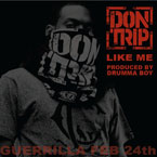Don Trip - Like Me Artwork