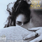 DRE - How I Fell In Love Artwork