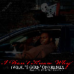 Edgar Allen Floe ft. J Wheels - I Don't Know Why (What's Goin' on Remix) Artwork