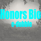 e-dubble - Honor's Bio Artwork
