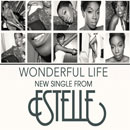Estelle - Wonderful Life Artwork