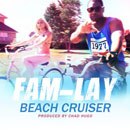 Beach Cruiser Artwork