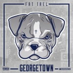 Fat Trel - BRRRR ft. Wale & Rick Ross Artwork