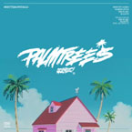 Flatbush ZOMBiES - Palm Trees Artwork