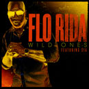 Flo Rida ft. Sia - Wild Ones Artwork