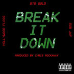 Hollywood FLOSS ft. STS &amp; Rob Jay - Break It Down Artwork
