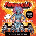 Funkadelic - Ain't That Funkin' Kinda Hard On You? (Remix) ft. Kendrick Lamar & Ice Cube Artwork