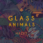 Glass Animals ft. Rome Fortune - Hazey (Rework) Artwork