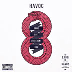 Havoc - Same Sh*t Different Day Artwork