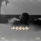 Hit-Boy - Feels ft. Ricky Anthony Artwork