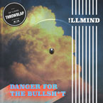 !llmind - Danger for the Bullsh*t Artwork