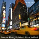 Imagine That ft. Shyheim & Block McCloud - Why Try Artwork