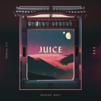 Jay Prince - Juice ft. Allan Kingdom Artwork
