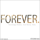 Knowledge Medina ft. Soul Theory & Reks - Forever Artwork