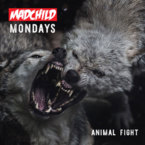04177-madchild-animal-fight