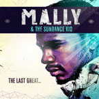 MaLLy - Shine Artwork