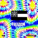 Mann - Freedom Artwork