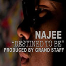Najee - Destined To Be Artwork