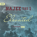 Najee The 1 ft. DB2 - Elevated Artwork