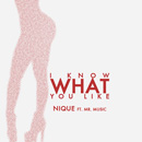 Nique ft. Mr. Music - I Know What You Like Artwork